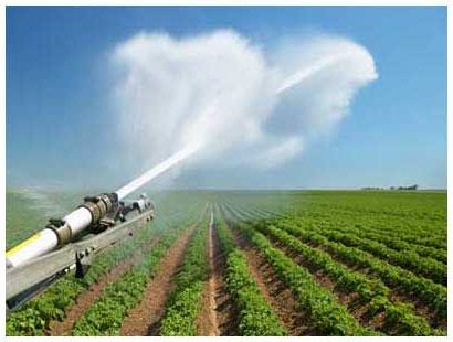 В ожидании хорошего урожая с мелиорированных земель